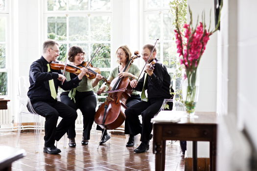 The String Quartet Company